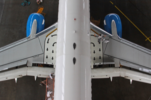 Aviation Cleaners Header